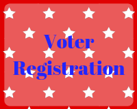 Voter Information</a></p> </div><footer class=